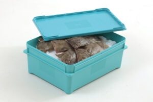 Fig 1: Reusable lidded box for the temporary storage and transportation of fish. (Courtesy: PPS)